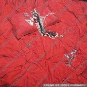 王强静物油画《红-情殇》欣赏下载